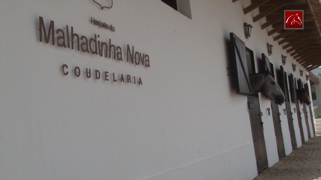 herdade-da-malhadinha-nova