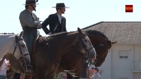 festa-do-cavalo-de-porto-salvo-2018