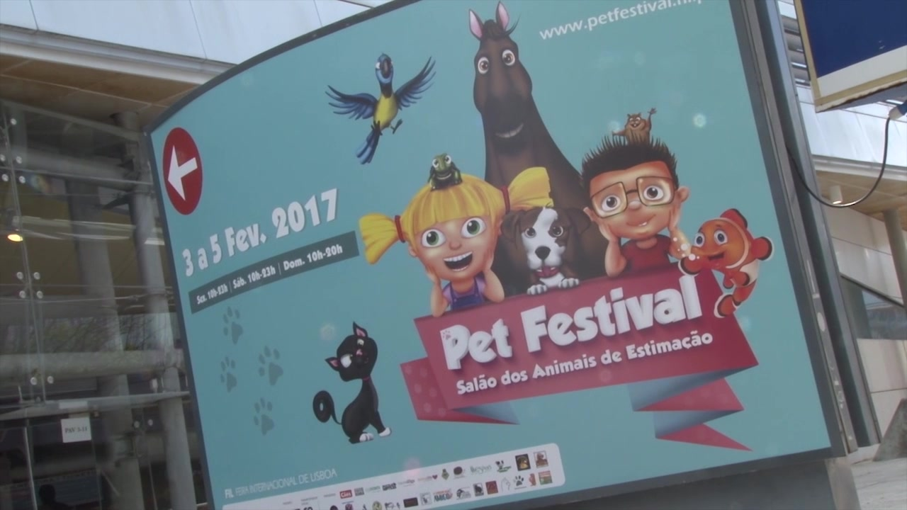 pet-festival-2017