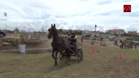 festa-do-cavalo-de-porto-salvo-2017