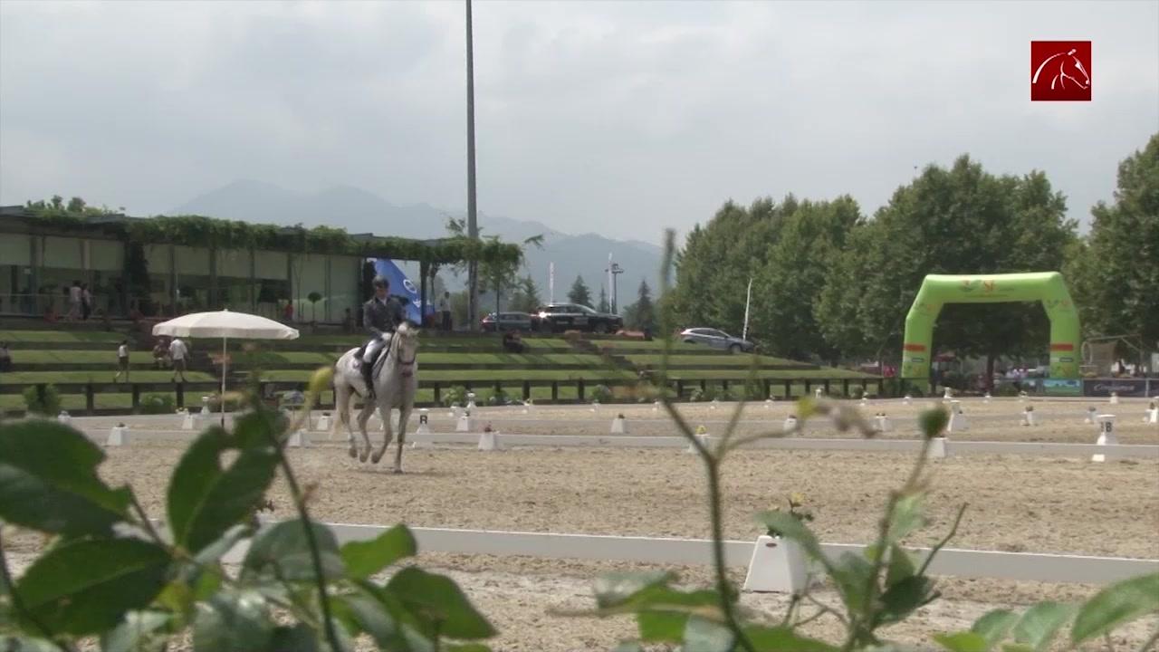 feira-do-cavalo-de-ponte-de-lima-2017